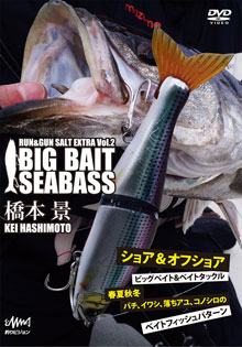 BIG BAIT SEABASS RUN & GUN SALT VOL.2